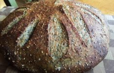 Sesame and Poppy Sourdough